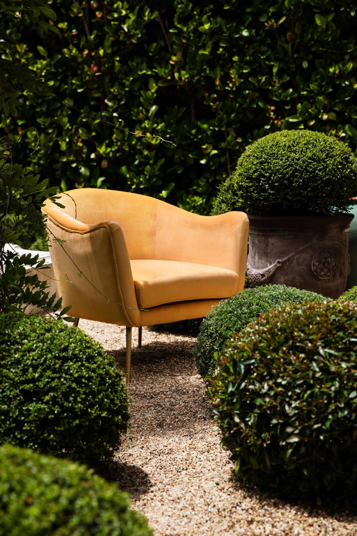 Greenwich occasional tub chair in yellow velvet