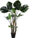 Block & Chisel faux monstera tree in plastic pot