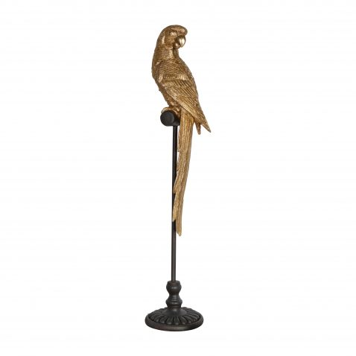 Golden parrot on black stand