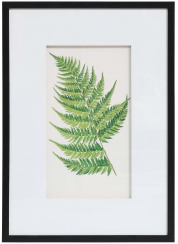 Block & Chisel fern print