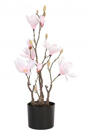 POTTED MAGNOLIA - faux magnolia flowers, fake plastic artificial flowers without pot