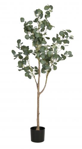 Eucalyptus Tree in round black pot, faux artificial plant