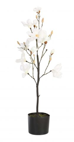 POTTED MAGNOLIA - faux white magnolia flowers, fake plastic artificial flowers without pot