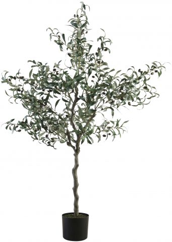 Block & Chisel faux olive tree in plastic pot