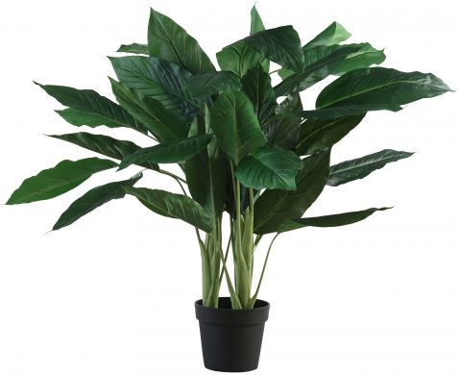 Block & Chisel faux anthurium tree in plastic pot
