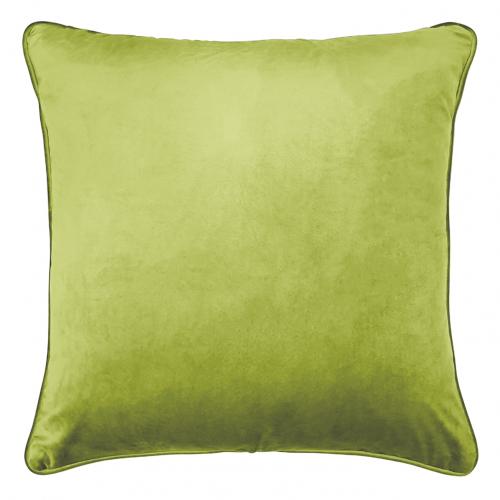 Chameleon animal print cushion back
