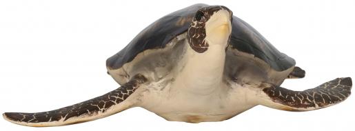 Block & Chisel polyresin turtle
