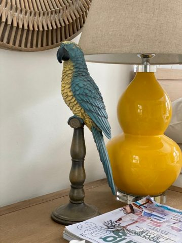 blue and yellow parrot, decor, statue