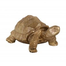 golden tortoise with textured shell decor