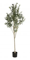 Olive faux tree plant for interior and exterior living