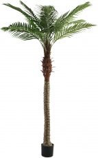 Block & Chisel faux palm tree in plastic pot