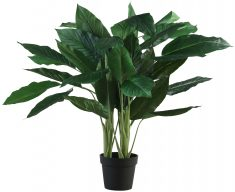 Block & Chisel faux anthurium tree in plastic pot