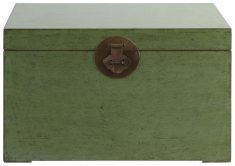 Block & Chisel green distressed wooden kist