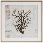 Block & Chisel framed seaweed print