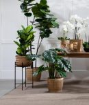 Bamboo planter with black metal stand